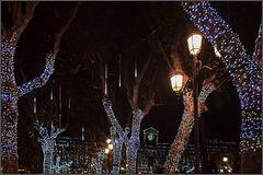 Sevilla Weihnachtsmarkt (PiP)