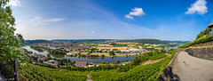 Neckar Valley Vista from Hornberg Castle (210°)