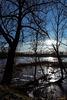 Überflutete Okerwiesen