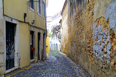 Petite rue !