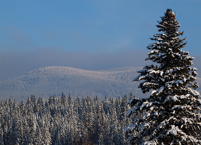 South of Quesnel, BC