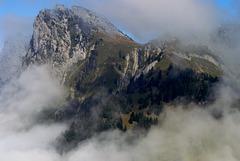 En montant à la Tournette - Hte Savoie
