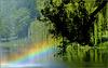 #29 Rainbow over the Lake...