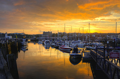Scarborough Harbour at sunset