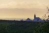 petit matin dans la plaine d'Alsace