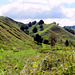 Up  Okahukura Saddle Road