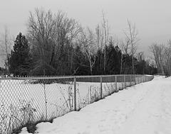 winter HFF