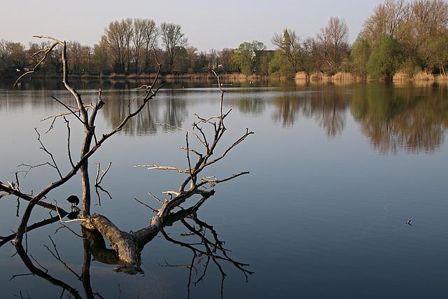 Ruheplatz im See
