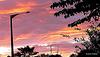 Tokoroa Sunset.