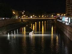 S en el río