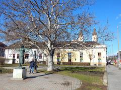 Nyíregyháza, Kálvin tér