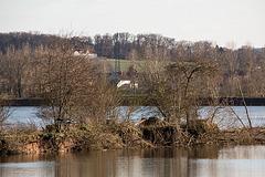 20150406 7600VRAw [D~SHG] Stockente, Kieswerk, Baggersee, Rinteln