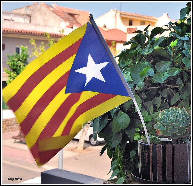 Setembre 11 - Diada Nacional de Catalunya