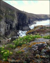 Wheal Coates tin mine cliffs from Tubby's Head.