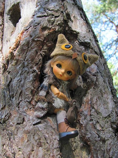 Bubo in a tree