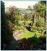 Saint Day garden, for Pam too, she loves gardens!