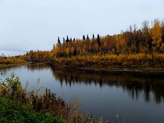 Autumn along the Chena river