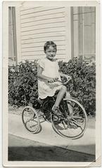 Tricycle Pride