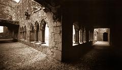 Bective Abbey cloisters (pinhole)