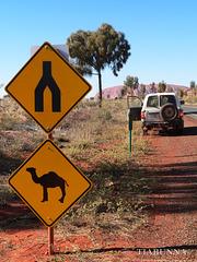 Only in Australia!