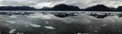 Approche de glacier dans les fjords chiliens