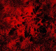 Le Rouge et le Noir.