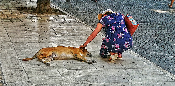 Spreading the love on a hot day in Corfu