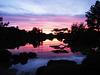 Sunset from the Japanese Garden