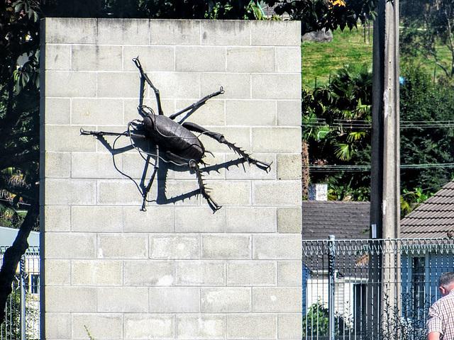 Te Kuiti Wall Art