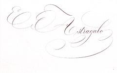 jx-vasxe-astragalo-02-2016