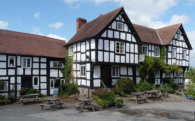Pembridge- The New Inn
