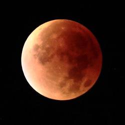 IMG 3626 SupermoonEclipse crop dpp