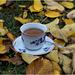 autumn coffee...