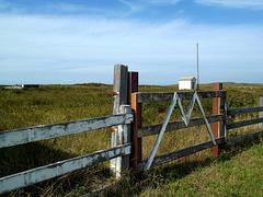 The M gate