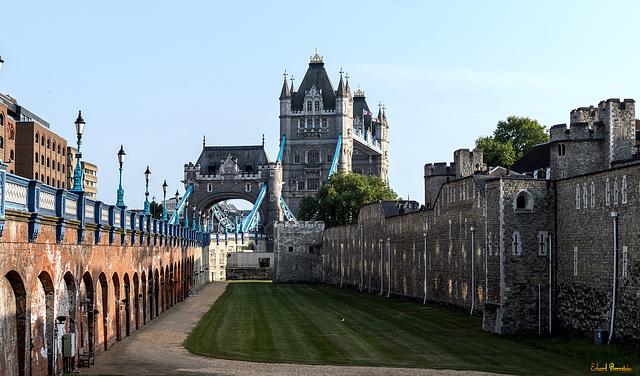 Tower und Tower Bridge am Nachmittag