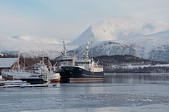 Port au fond du fjord