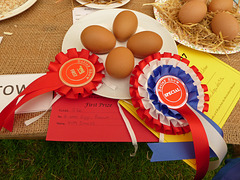 4 hen eggs, brown, Betley Show, Staffordshire.