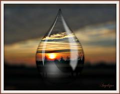 Lorsque le jour se lève c'est un autre rêve qui commence, et à chaque jour succède un jour plus clair, à chaque éblouissement un nouvel éblouissement