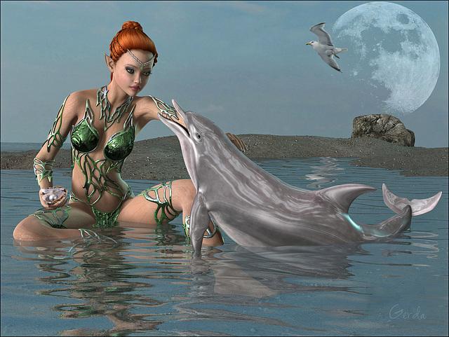 Le cadeau du dauphin