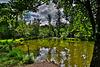 Ein See aus der Keltenzeit ... A lake from the Celtic period...