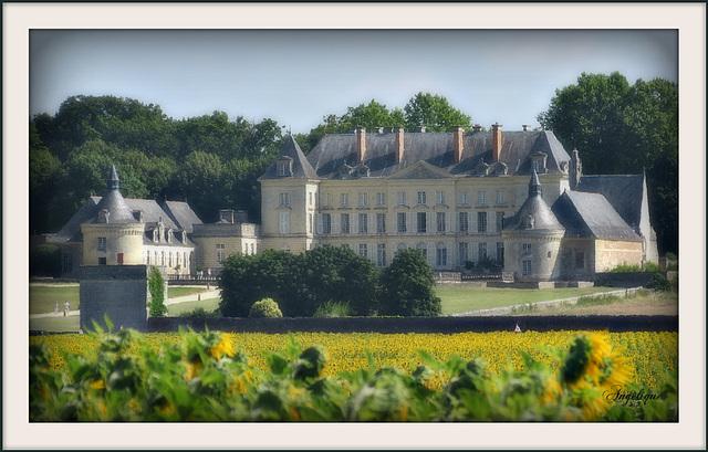 Château de Mongeoffroy