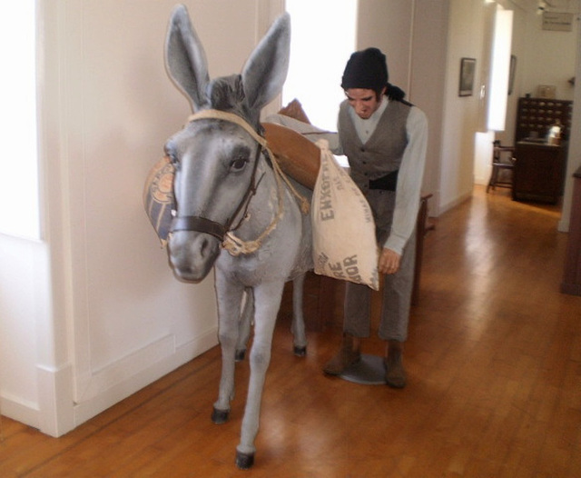 Miller and his donkey.