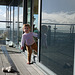 HFF from Gosport ~ Finn & a balcony Fence