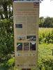Löwenzahn-Erlebnispfad - Spätrömisches Kastell an der Urft