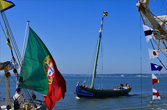 Lisboa, Tall ships race, Varino