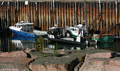 Berths 4, 5, and 6 -- Eastport Workboats