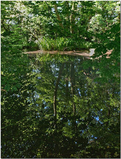 River Oughton, Hertfordshire