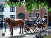 Horse tour with Bruges caption 2