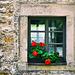 Klosterfenster