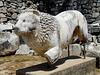 Didyma- Temple of Apollo- Stone Lion